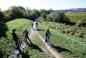 Radfahrer am Rande eines Weingartens